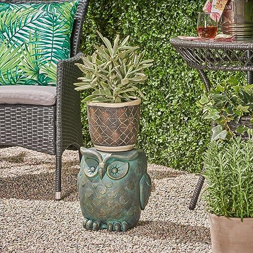 Marvelous Buy Christopher Knight Home 307406 Agnes Owl Garden Stool Andrewgaddart Wooden Chair Designs For Living Room Andrewgaddartcom