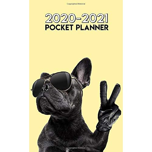 """2019-2020 24 Month Pocket Planner: Two-Year Monthly Pocket Planner with Phone Book Cute Kitten Notebook Mini 4 x 6.5/"""""""