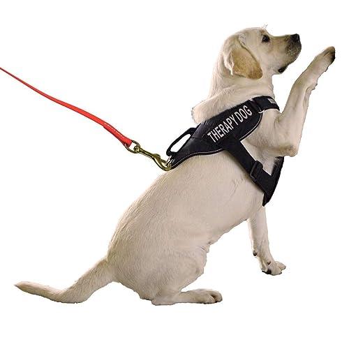 Schutzhund Tracking Line BIOTHANE 33 ft MANY COLORS