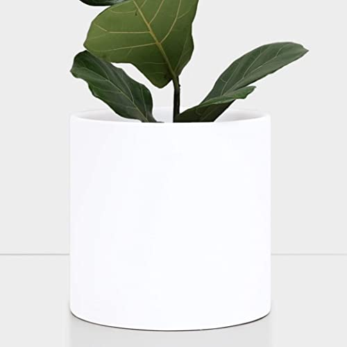 Matte White Indoor 8 Inches Round Modern Fiberglass Resin Planter Pot by Dvine Dev Easy Grow Planter with Drainage Hole and Plug