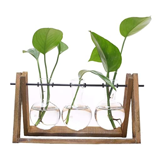 A Gaosheng Water Planting Glass Vase,Clear Glass Vase Hanging Plant Terrarium with Retro Solid Wooden Stand for Hydroponics Plants Home Garden