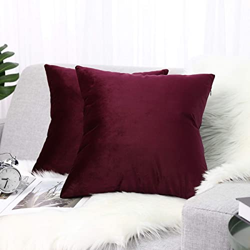 Burgundy Lewondr Velvet Throw Pillow Case 2 Pack Soft Solid Color Modern Square Pillow Case Throw Cushion Covers for Car Sofa Bed Home Christmas Decor 30x50cm 12x20