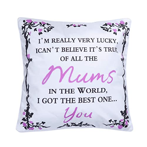 WINOMO Pillowcase for Thanks Giving Day All The Nans In The World I Got The Best One You Cushion Cover