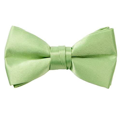 Spring Notion Boys Pre-Tied Banded Satin Bow Tie Optional Gift Box