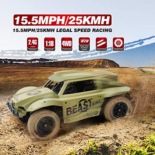 Buy Gizmovine Monster Trucks RC Cars 1/18 Scale 4WD High