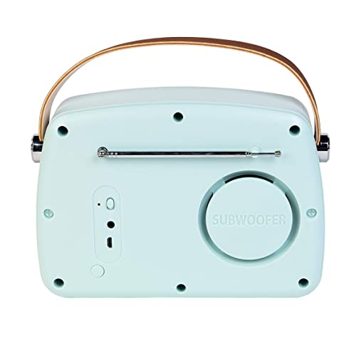 ,Stereo Audio Output,Support for TWS Function. 87-108 MHz Gigue Radio Speaker Bluetooth5.0,with Dual Functions of Bluetooth Speakers and Radio,Global FM Band