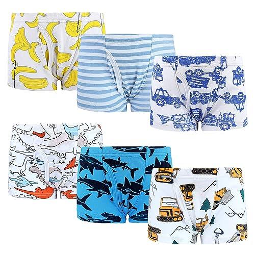 Zebricolo Boys Cotton Underwear Briefs Boys Boxer Shorts Briefs 1-7 Years Pack of 6