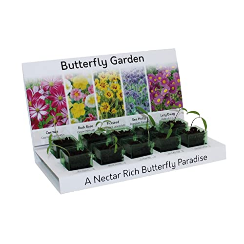 Grow Your Own Flower Kit by Thompson /& Morgan Grow Your Own 5 Varieties of Contrasting Flowers in one Seed Grow Kit A Perfect Gardeners Gift Stunning Sunflower Seed Growing Kit