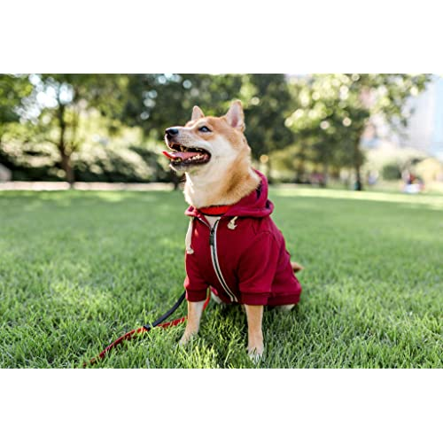 M Ellie Dog Wear Maroon Red Adventure Zip Up Dog Hoodie With Hook and Loop Pockets and Adjustable Drawstring Hood Comfortable /& Versatile Dog Hoodies Available in Extra Small to Extra Large