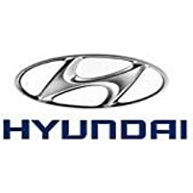 Genuine Hyundai 64100-24371 Complete Radiator Support Panel