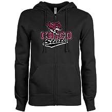 CollegeFanGear Bryant Champion Vegas Gold Fleece Hoodie Arched Bryant University Bulldogs