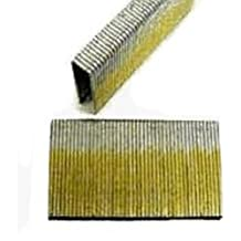 NailPro 1//4 Crown x 5//8 Leg Stainless Steel 5,000 pcs of L Series Staples JAL10SS
