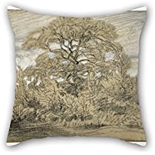 elegancebeauty slimmingpiggy comfortable bedding feed each other hummingbirds 18x18 inch pillow case cushion cases 18 x 18 inches 45 by 45 cm best choice for outdoor,lounge,deck chair,couples,him