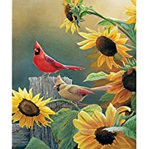 Green Lapoea DIY Oil Painting Paint by Number Kits Painting for Adults and Kids Arts Craft for Home Wall Decor Xmas Gift Snowfield Holly Cardinal 40x50CM