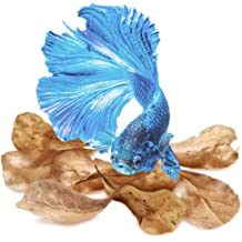 """SunGrow Betta Mirror Entertains and Encourages Must Needed Exercise in Betta Fish 2.3/"""" Circle Mirror with 1/"""" Floating Ball to Hang from 4/""""-6/"""" Clear line Included"""