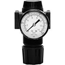 Polycarbonate Bowl Auto Drain 0 psi 0.3 /µm Filter Gauge Piston 0-11 Ross Controls 5321C2027 Combination Miniature Series Filter Regulator Pressure Range 0-160 0-6.9 100 psi