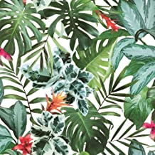 Kathy Kuo Home Green Rainforest Palm Print Removable Wallpaper