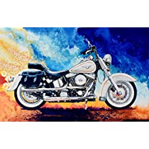 Riverside Big Bear DIY Oil Painting Paint by Number Kit for Kids Adults Beginner 16x20 inch Frame Drawing with Brushes Christmas Decor Decorations Gifts