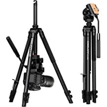 Top Deals KINGJOY Mini Travel Tabletop Tripod Lightweight Stand,KT-30 Table Tripod Stand with Max CHUN-Accessory Load up to 2.5kg//5.5lbs for
