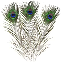 Bseash Real Natural Peacock Eye Feathers 10-12 Great Wedding Christmas Halloween Decorations House Decoration 25~30cm 10