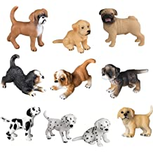Ubuy Kuwait Online Shopping For Pet Kingdom In Affordable Prices