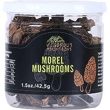 110Pcs Morchella Esculenta Seed Common Morel Mushroom Organic Vegetable Ornamental Plant Home Decor Non-GMO Seeds for Planting Morchella Esculenta Seeds XKSIKjians Garden